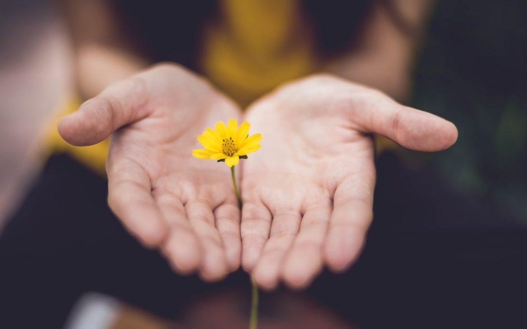 perdonare, perdonarsi: facile?